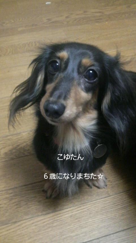 6歳おめでとう☆