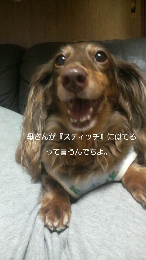 歯みがき☆