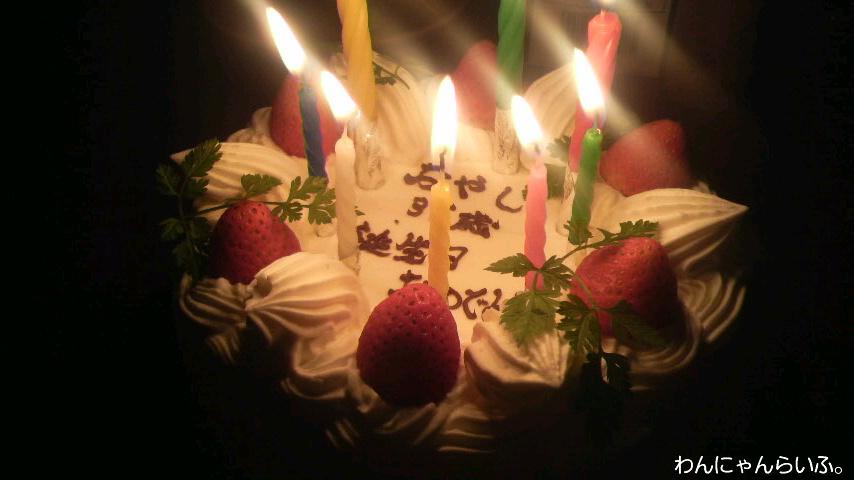 父さんの誕生日。