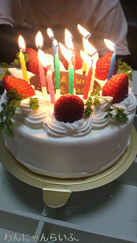 こゆきの誕生日☆