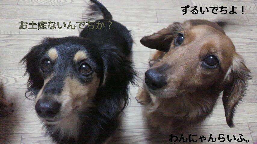 こどもの日☆