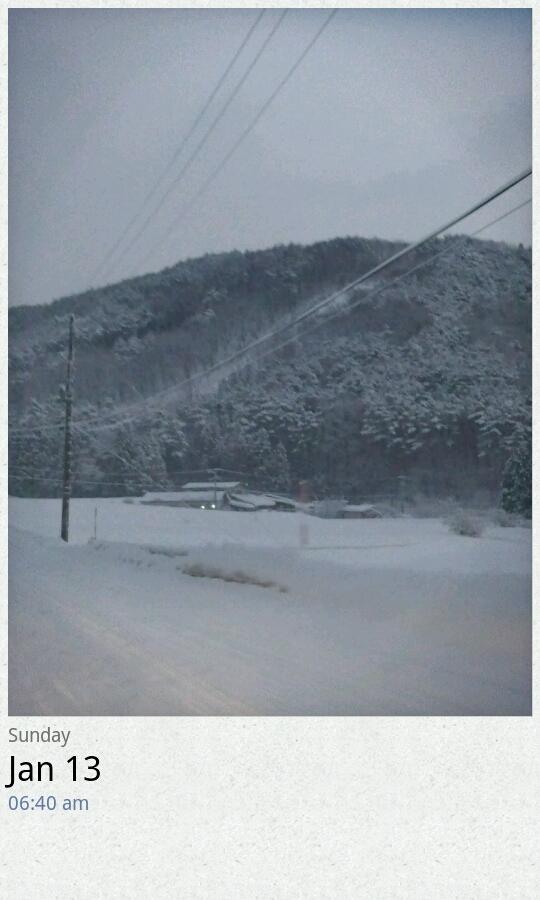 雪雪雪…。